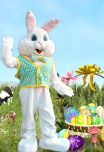 bunny01